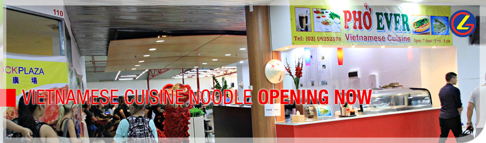 Vitnam-Rice-Noodle_opening